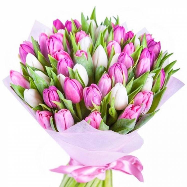 объявлений с днем рождения тюльпаны фото приготовить изысканную закуску